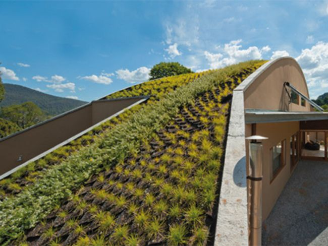 Green Roof Installation